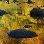 Dark rocks in water, with reflection of autumn trees in water