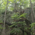 Large rock outcrop in forest