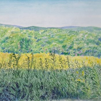 Pastel of Goldenrod Field, Pony Mountain By Angela Vincent