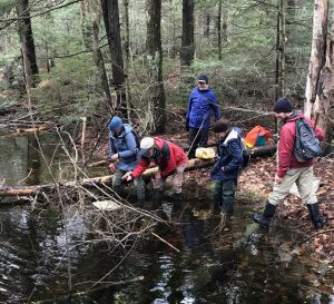 group of people investigating a vernal pool