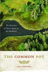 Book cover of The Common Pot by Lisa Brooks